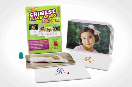WINK to LEARN Chinese Flash Cards - Beginner 1
