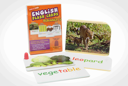 WINK to LEARN English Flash Cards - Beginner 3