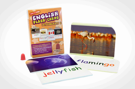 WINK to LEARN English Flash Cards - Intermediate 3