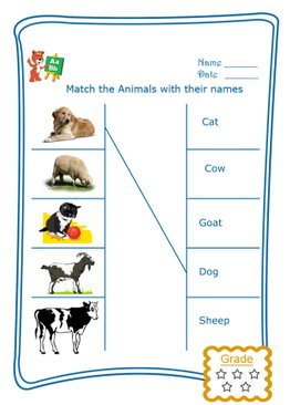 Match the Word - Domestic Animals