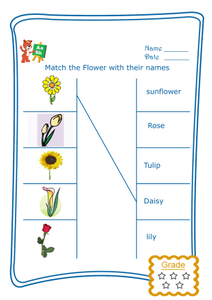 Match the Word - Flowers