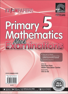 Primary 5 Mathematics Mock Examinations
