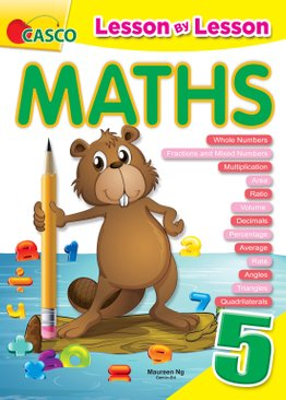 Lesson By Lesson Maths Primary 5