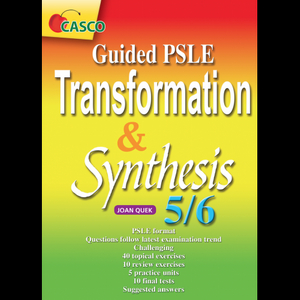 Guided PSLE Transformation & Synthesis