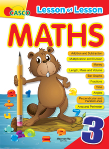 Lesson By Lesson Maths Primary 3