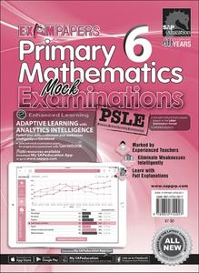 Primary 6 Mathematics Mock Examinations