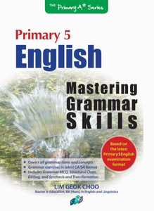 English Mastering Grammar Skills P5