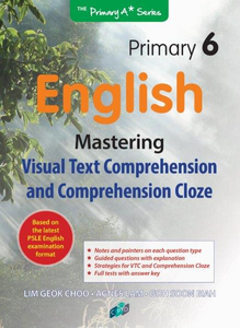 Mastering Comprehension Visual Text & Cloze P6