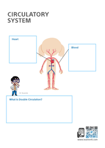 Upper Primary Science Worksheets (Subscription)
