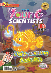 The Young Scientists 2019 subscription (Level 1)