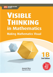 Visible Thinking in Maths 1B