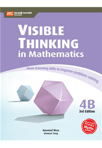 Visible Thinking in Maths 4B