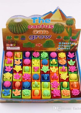 Science Educational Toy For Kids Play N Learn Party Gift Growing Cactus 4 pieces per pack