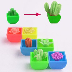 Play N Learn Science Toy Cactus ( 4 in 1 )