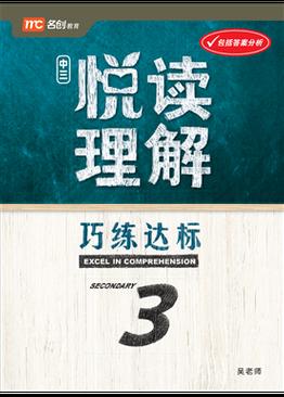 Excel In Comprehension Sec 3 中三 悦读理解 巧练达标