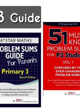P3. 2-Guidebook (Quick Starter Kit)