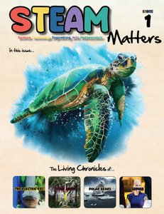 STEAM Magazine: STEAM Matters Subscription 2020 - 6 Issues