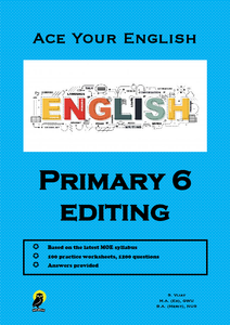 PRIMARY SIX ACE YOUR ENGLISH EDITING