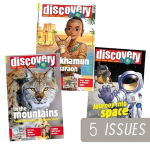 Discovery BOX  - 2019 (5 issues)