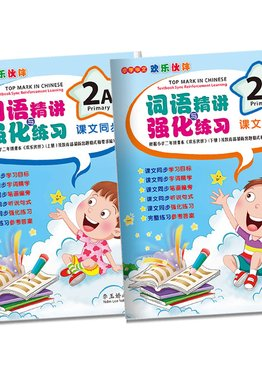 Top Mark in Chinese 2A&2B ( Primary 2)