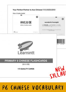 Chinese Vocabulary Flashcards P6