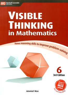 Visible Thinking in Maths 6