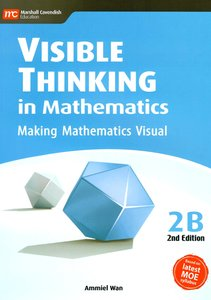 Visible Thinking in Maths 2B