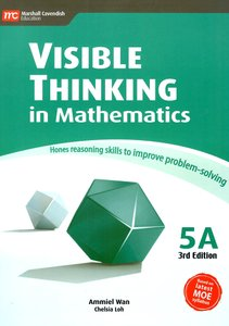 Visible Thinking in Maths 5A