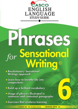 Phrases for Sensational Writing 6