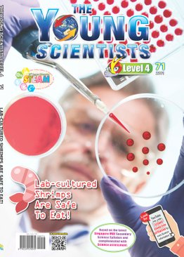 The Young Scientists 2021 Level 4 subscription