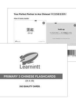 Chinese Vocabulary Flashcards P3