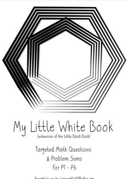 P1-6. My Little White Book With 170 Questions (My Little Black Book Extension)