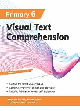 Visual Text Comprehension Primary 6