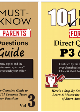 P3. 101 Must-Know Questions Vol 3 + 4 (2-Book Quick Starter Kit for CA2/SA2)